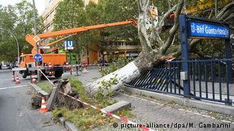Ξεριζωμένα δέντρα κλείνουντους δρόμους