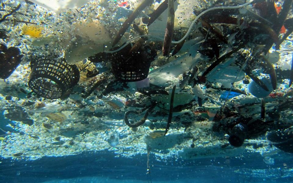 Τελευταίες έρευνες υποδεικνύουν ότι η μεταφορά του πλαστικού με τα θαλάσσια ρεύματα διευκολύνει τη μετάδοση ιών σε θαλάσσια είδη στη Μεσόγειο.