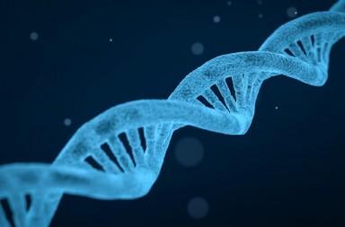 genetikes-diatarahes