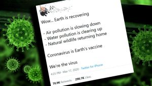 Eco_fasch